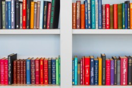 Books on a bookshelf - infographics resources