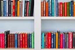 Books on a bookshelf - infographics resources