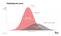 Flattening the curve, Vox version