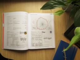 Dear Data book inside